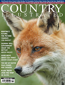 Country Illustrated Issue 80