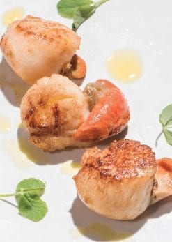 Mouthwateringly fresh Cornish scallops: 3 dozen, hand-cut