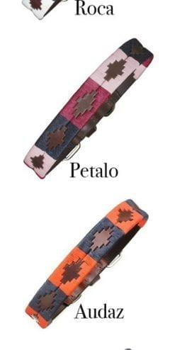 Handmade Argentinian Polo Dog Collars by pampeano