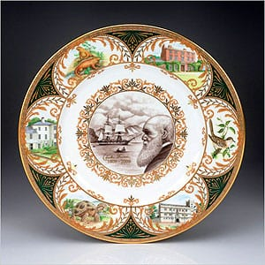 Charles Darwin commemorative porcelain plate by William Edwards