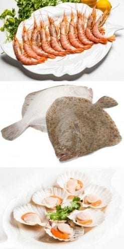 Gourmet Fish & Shellfish: wild turbot, wild prawns and scallops: £195 worth of sea-fresh seafood, only £97