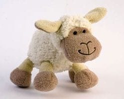 Smile! Meet cuddly Lamby from the Fernie country