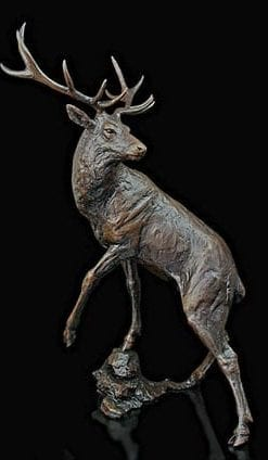 Limited Edition Bronze 'Majesty' by Michael Simpson