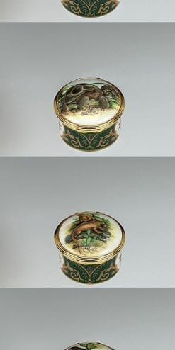 Charles Darwin commemorative trinket or pill box