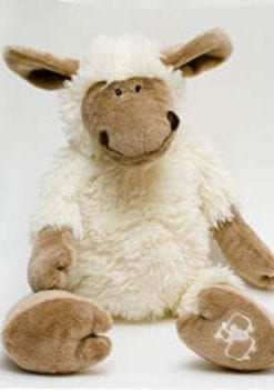 Adorable soft new sheep from the Fernie country