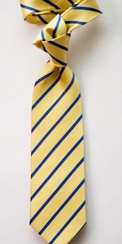 Fox and Chave Lemon and Navy Stripe Silk Tie